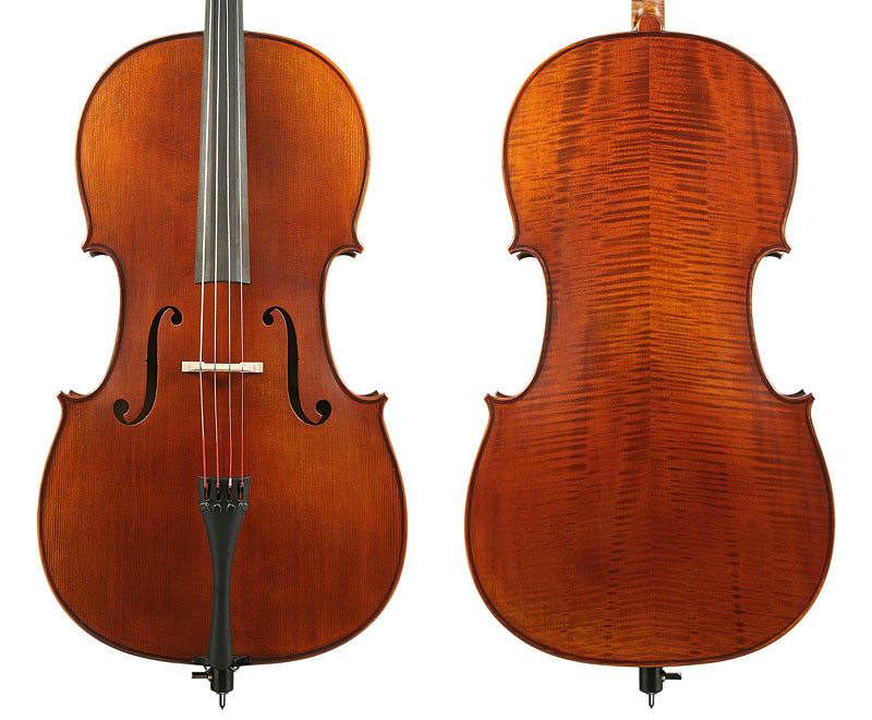 Vasile Gliga Advanced Cello